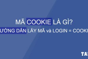 ma-cookie-la-gi-huong-dan-lay-ma-login-bang-cookies-taidv.com