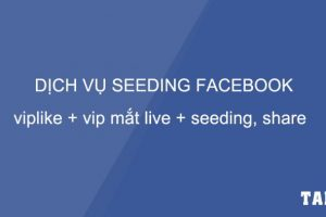 dich-vu-seeding-facebook-viplike-vipmatlive-seeding-share-taidv